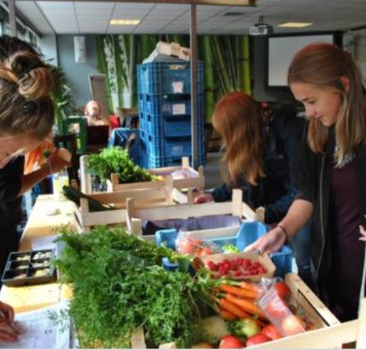 Green Office or 'sustainability hub' at university
